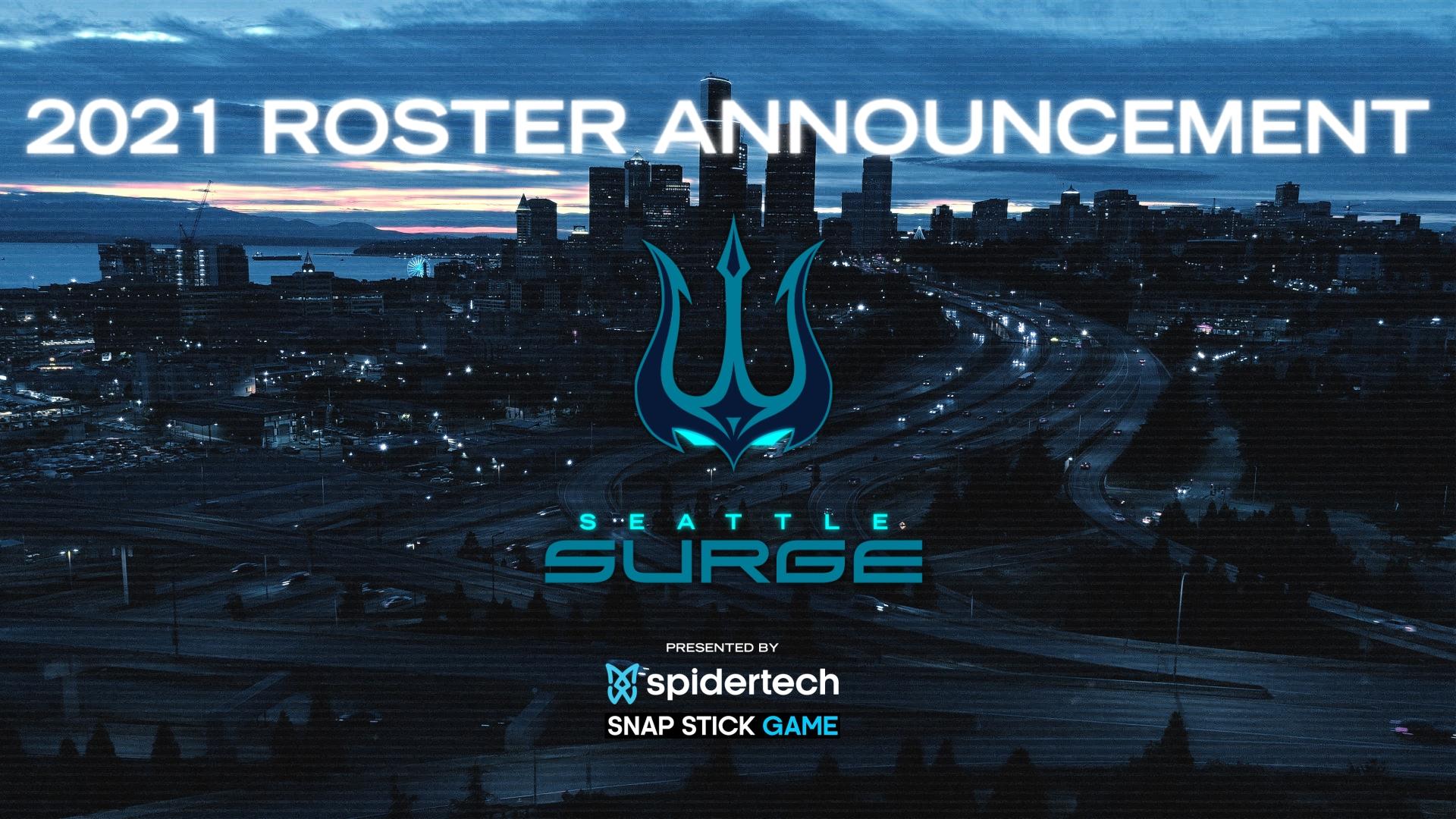 teams text logo alternative sea surge